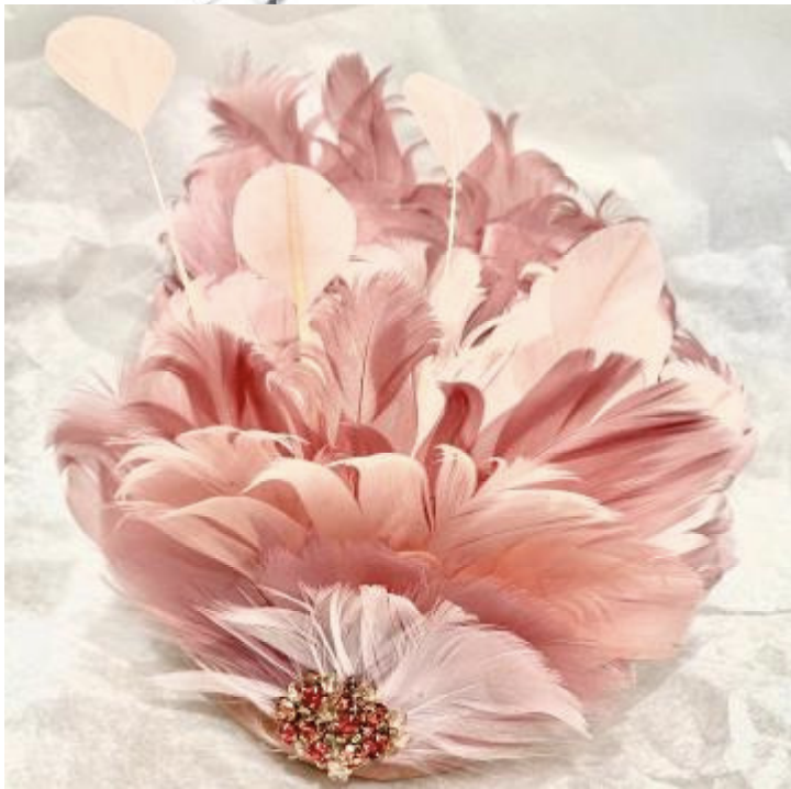pinces-rose-plumes